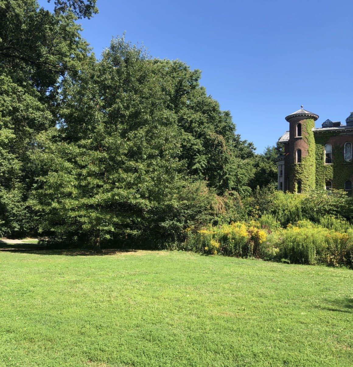 8 Best NYC Parks to Enjoy on Sunny Days