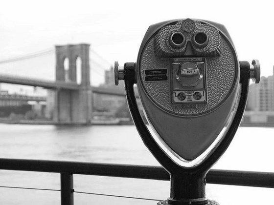 Brooklyn View1