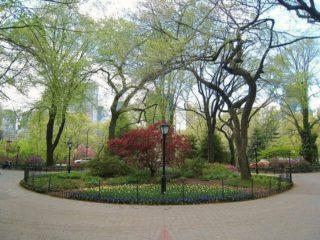 Best Picnic Spots in New York City