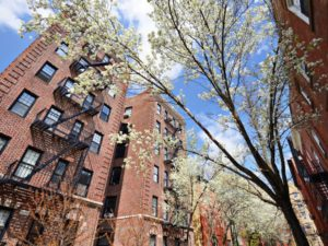 Section 8 Apartments: Section 8 Voucher Program in NYC
