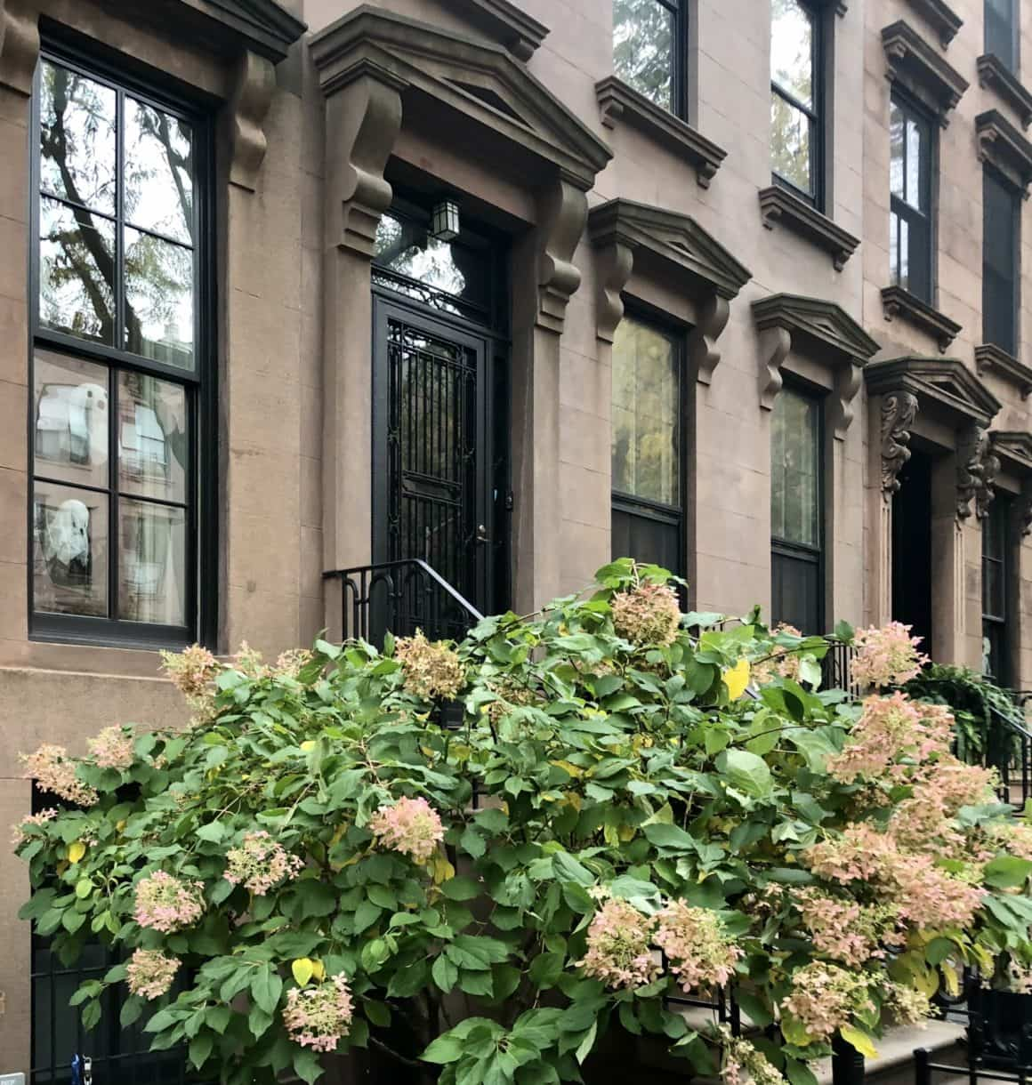 Buying a Brownstone