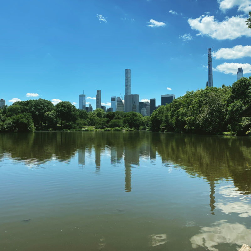 Central Park, June 16th, 2020