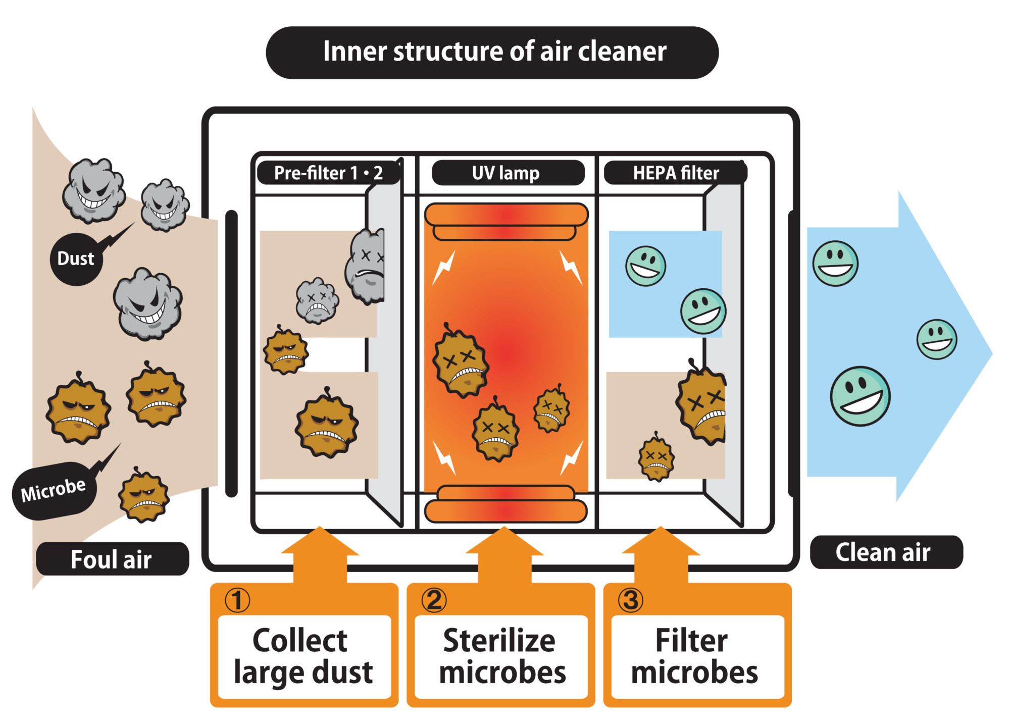 Air Purification Process