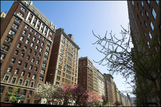 Affordable Areas for NYC Apartments