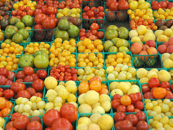 20100805_union-square-farmers-market-tomatoes_23