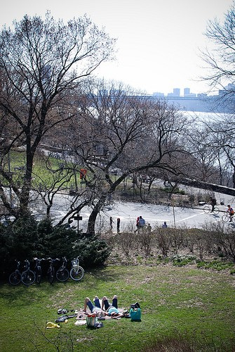 Skip Central Park: 5 Places in NYC to Have a Picnic in the Summer