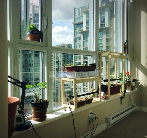 You Can Grow an Indoor Garden in Your NYC Apartment