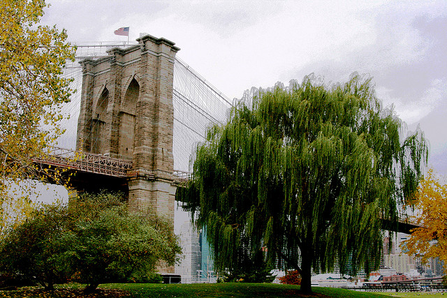 7 Reasons Why You Should Live in Brooklyn