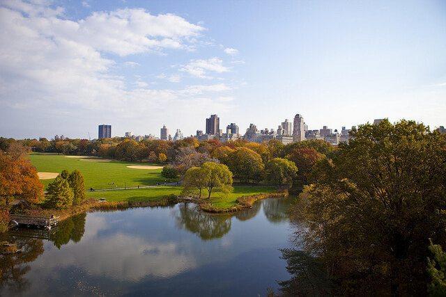 Neighborhood Spotlight: Upper East Side