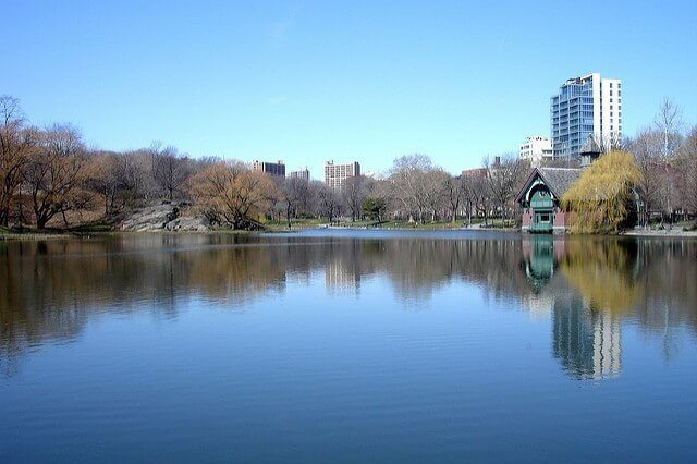 Central Park: Top Things to See & Do